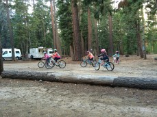 tahoe bike gang